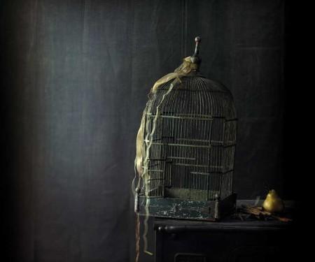ouverture-cage